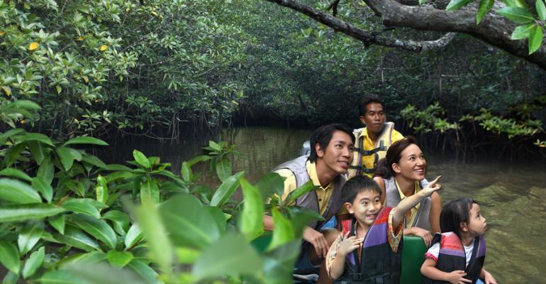 Family at Mangrove
