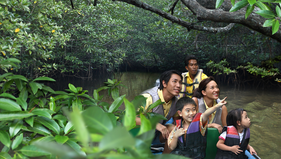 Family at Mangrove